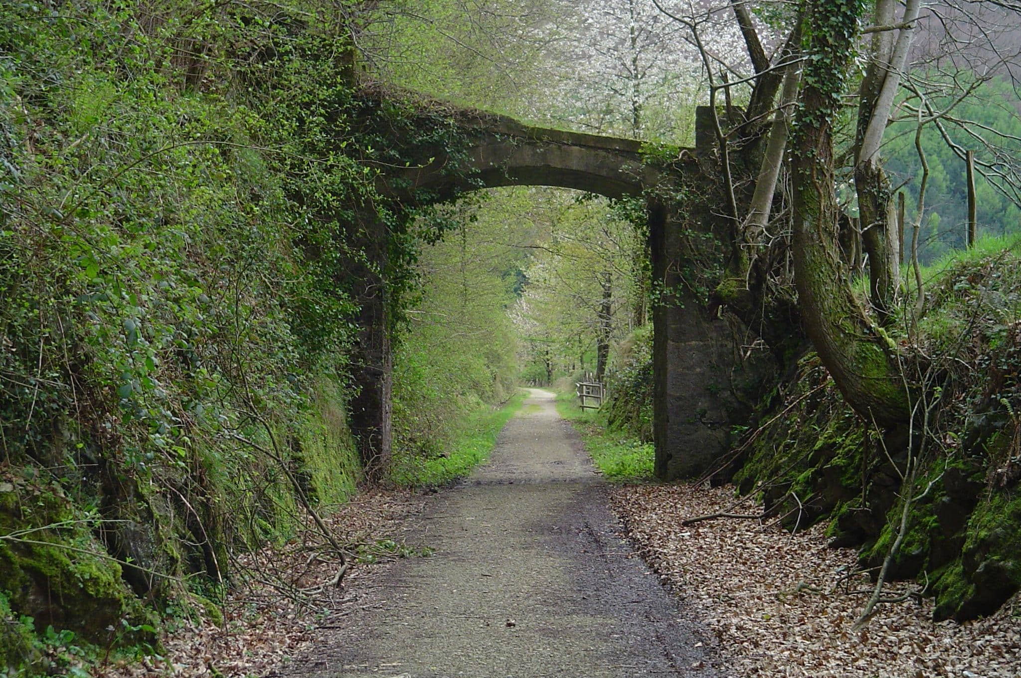 A view under stony arched bridge over a narrow paved road.