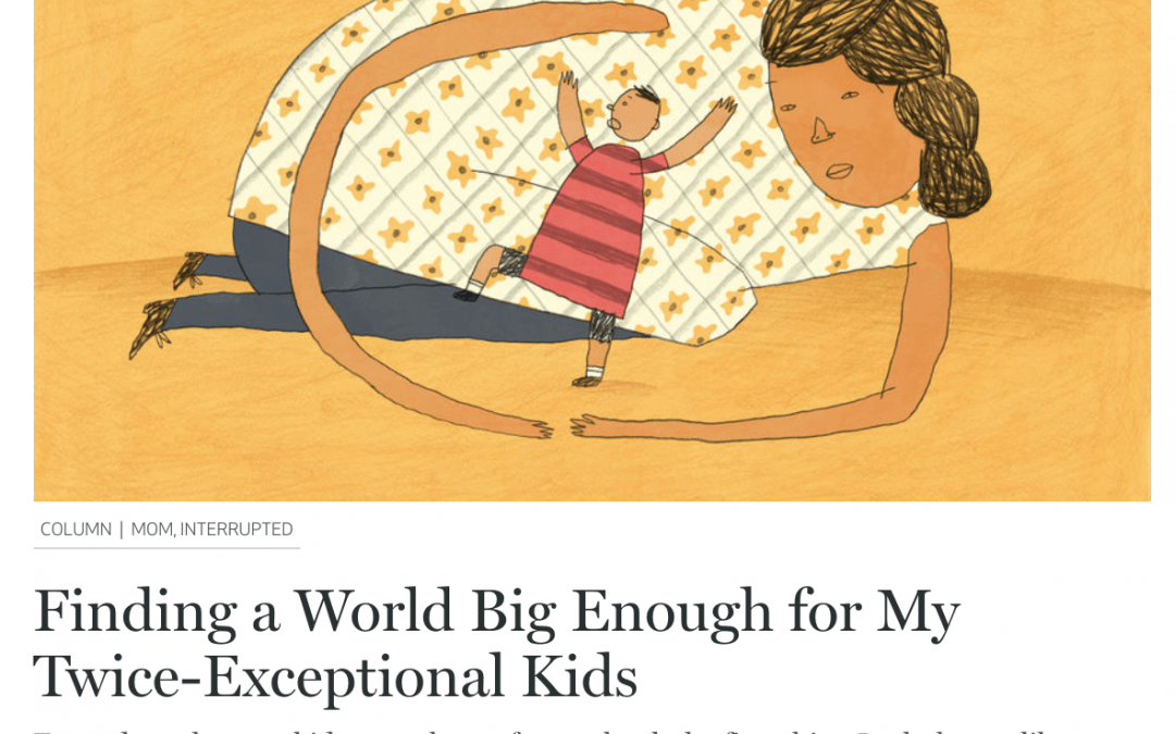 Catapult: Finding a World Big Enough for My Twice-Exceptional Kids