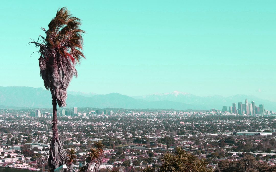 Women Write Los Angeles: Nine Great Novels about L.A., By Women